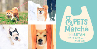 1.pets_banner-314x160